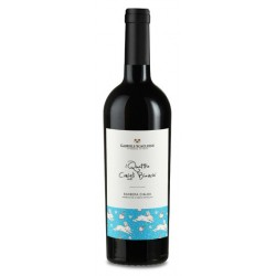 6 Bottles of Barbera d'Alba i Quattro Conigli Bianchi, Gabriele Scaglione