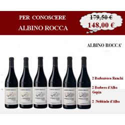 Per conoscere Albino Rocca